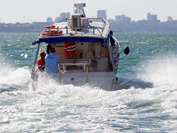 Darwin Harbour Seagrass Surveys