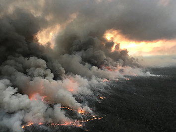 Red Cross Recovery Hubs set up after wildfires