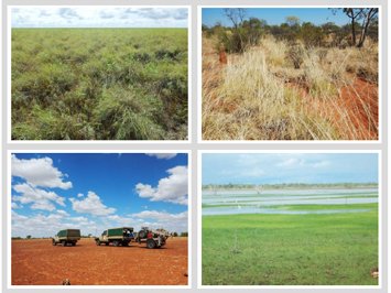 Soil and Land Capability Assessment for Irrigated Agriculture on Kurnturlpara and Part of Warumungu Aboriginal Land Trusts