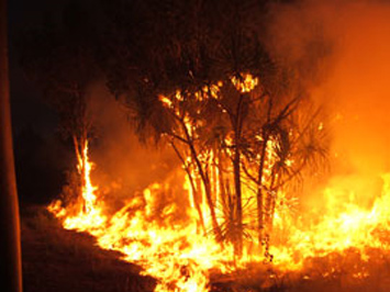 Last chance to have your say on Bushfires Management Act