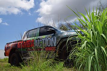 2017 Gamba Action Program Launched